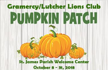 pumpkinpatchnewsflash